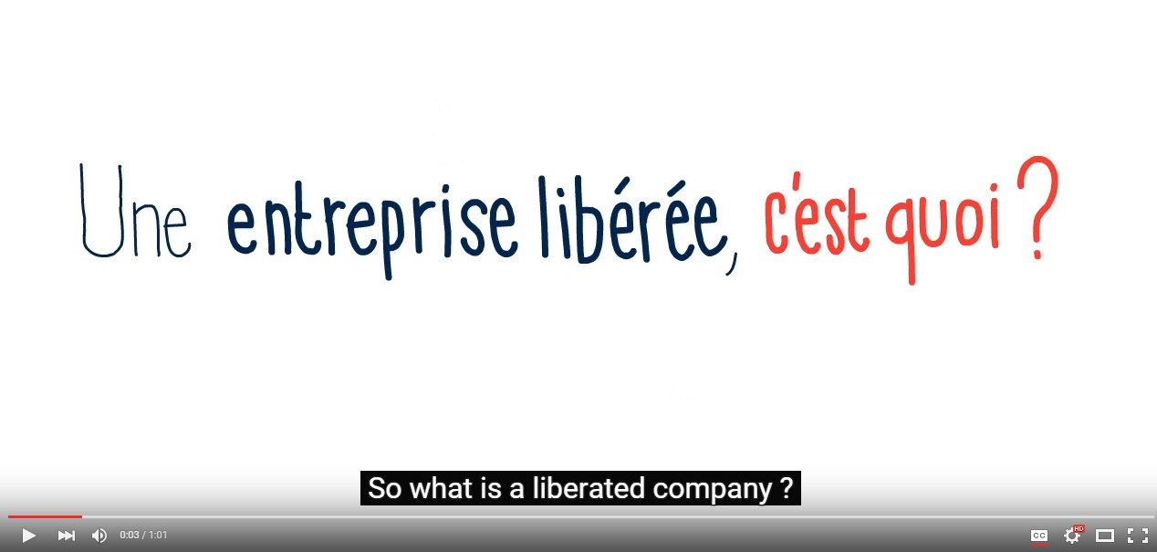 "The ""Liberated Company"" cartoon with English subtitles fully integrated"